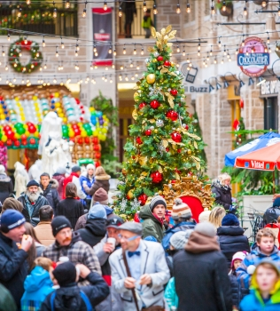 Welcome Discreetly Yours, Wigs and Accessories! Plus: A Review of 2016 at Old Quebec Street Mall